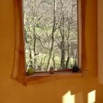 Encadrements de fenêtre. Merisier. Mur recouvert d'un badigeon de chaux.